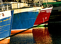 Fishing Boats, Fraserburgh